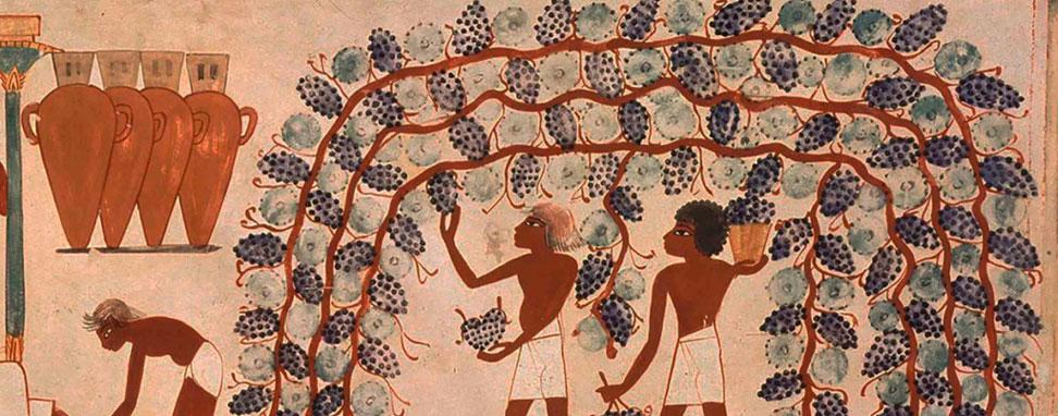 El origen del vino en Próximo Oriente Arqueogastronomía Blog Cultural